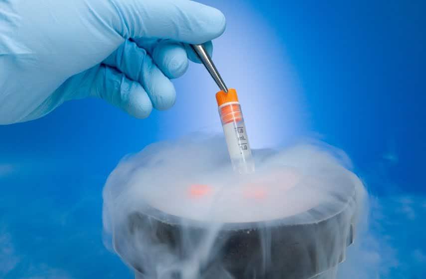 Kỹ thuật bảo quản chủng giống vi sinh vật ATCC