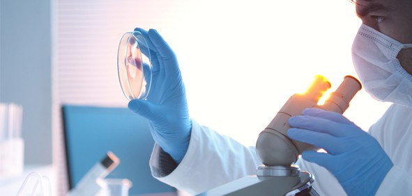Kỹ thuật chẩn đoán vi khuẩn