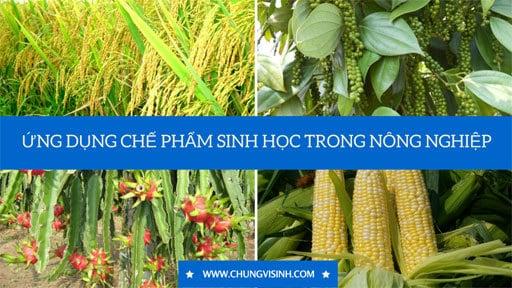 Ứng dụng chế phẩm sinh học trong nông nghiệp