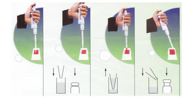 cách lấy mẫu theo chiều ngược