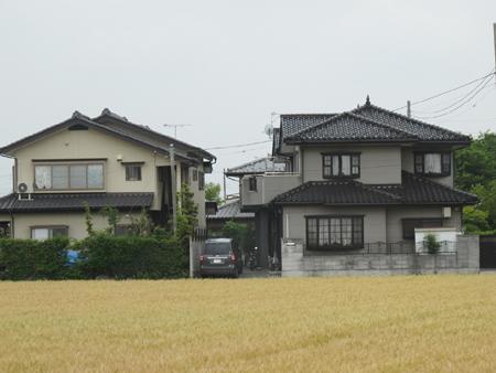 Sướng như nông dân Nhật Bản 5