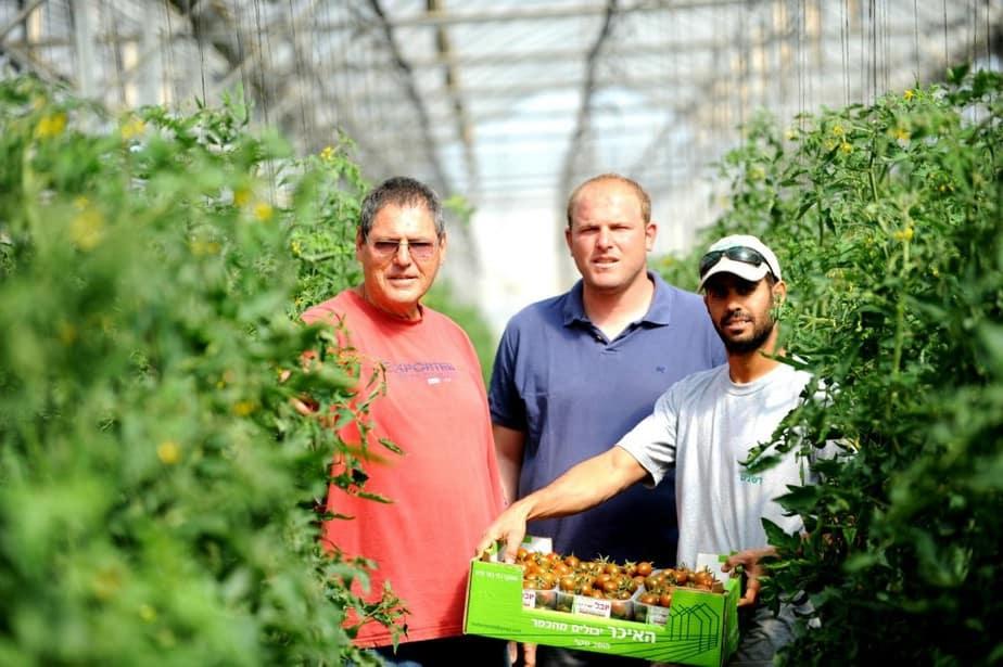 Kỳ tích nông nghiệp Israel