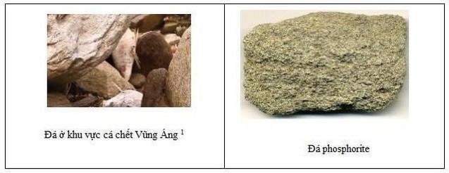 so sánh cấu trúc đá phosphorite